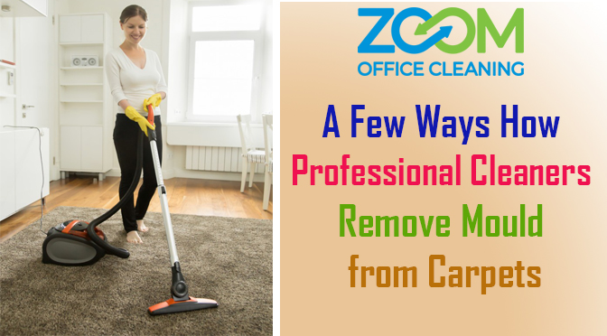 Professional Cleaners Remove Mould from Carpets